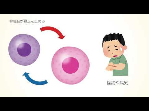 国際新型コロナ細胞治療研究会