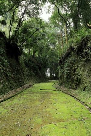【JAF熊本】和水(なごみ)町とJAF熊本支部が観光協定を締結 一般 ...