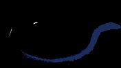 『天翠』ブランドロゴ