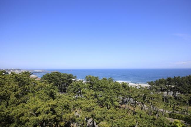 海と松林に囲まれた豊かな自然