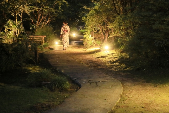 幻想的な夜の日本庭園