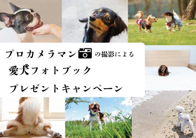 愛犬との旅の思い出に