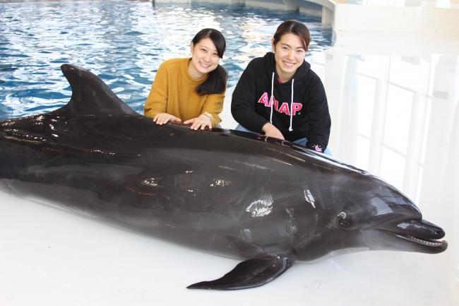 イルカとスタッフ
