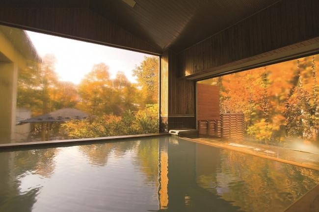 森の中に浮かぶような温泉露天風呂