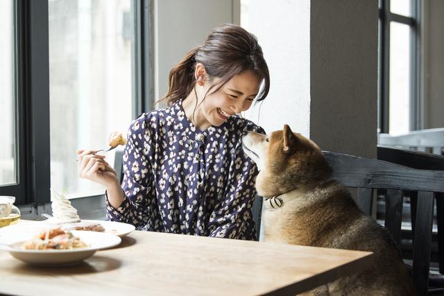 愛犬と食事イメージ