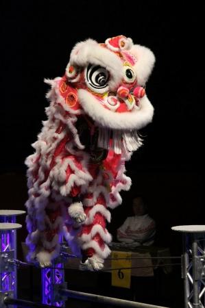香港のチームによりドラゴンダンスやライオンダンスなども行われます