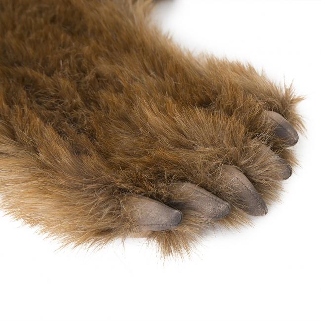 ディティールこだわった手足の爪