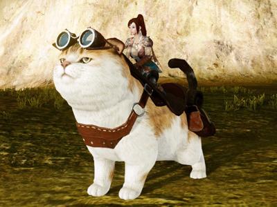 ▲新登場の騎乗ペット「旅猫コカリカ」