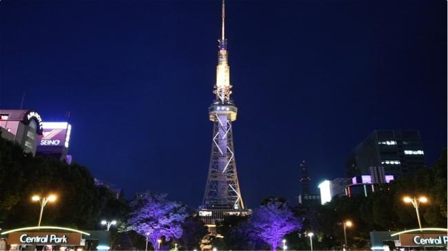 テレビ塔と周辺樹木のライトアップが連動して、選択した色に変化。