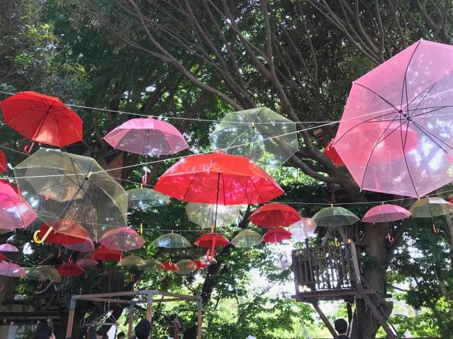 傘の森sunny18