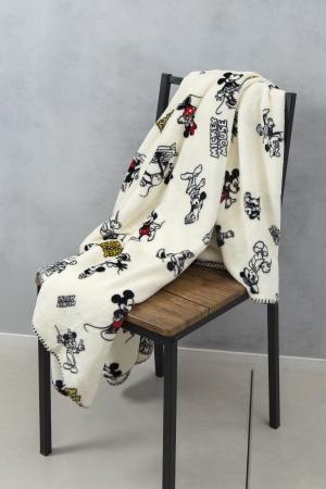 ○ふわもこ毛布(¥2,000)