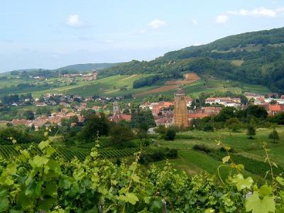 ジュラ山脈の麓にあるアルボワの町