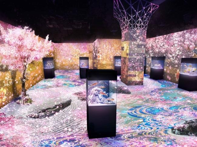 「舞桜の庭 ※イメージ」