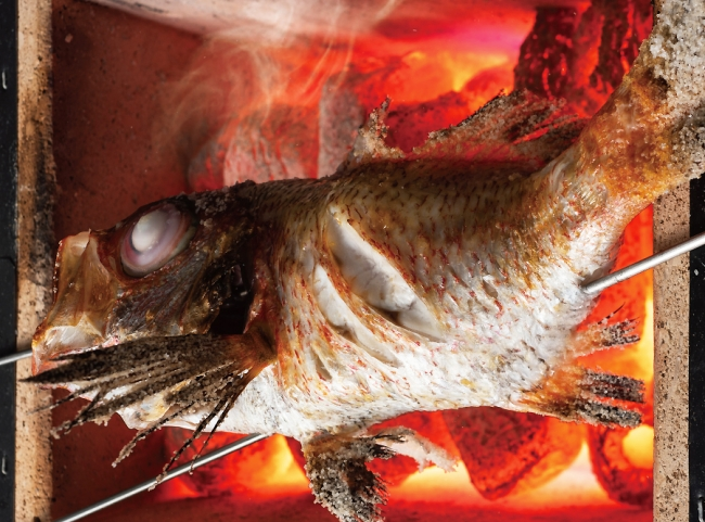 「のどぐろ塩焼き」とろけるような舌触りの身は、炭火で香ばしさが加わり、後を引く味わいに。 通常価格:1尾1,850円(イベント価格:925円)