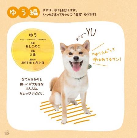 書籍『柴犬ゆうと猫のとろ』(ぴあ) 中面