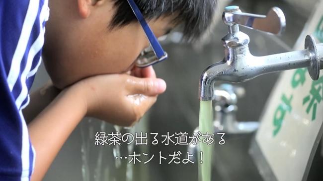 島田 市 学校 お茶