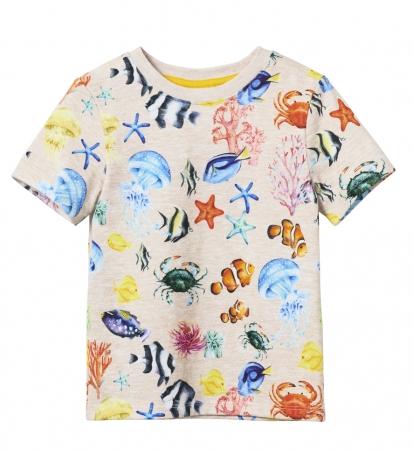 キッズボーイTシャツ¥599