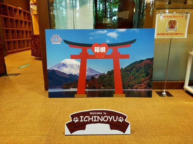 箱根旅の思い出にわんちゃんフォトブースもご用意!