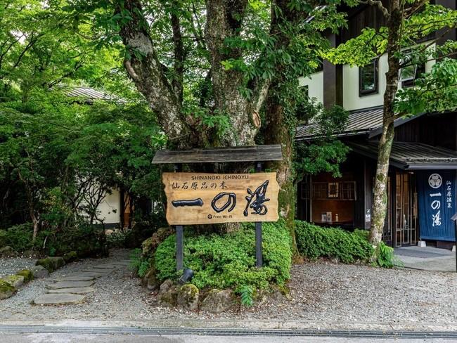 観光の拠点としてアクセス便利な仙石原品の木一の湯