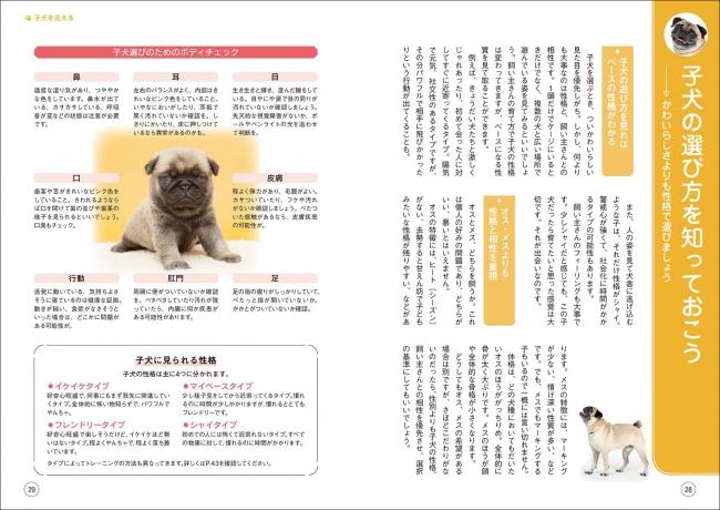 クレーン 中国 ゲーム 犬 【虐待】中国のクレーンゲーム、ヤバすぎる。│ニュースちゃんねる