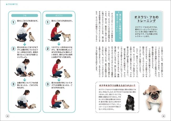 クレーン 中国 ゲーム 犬 E