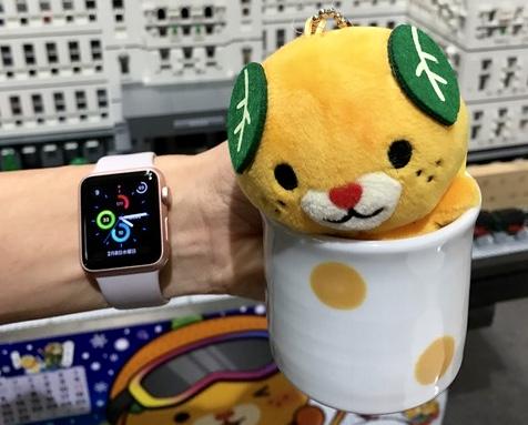 【Apple Watchを装着する愛媛県職員と愛媛県ご当地キャラクターみきゃん】