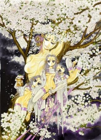 作品名「桜の四」 ©中村博文