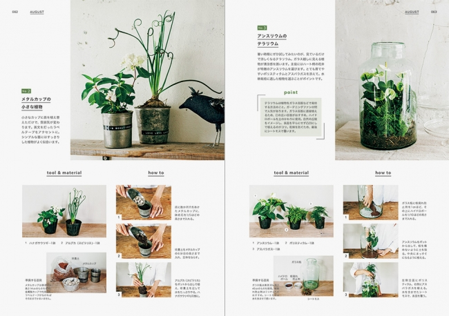 (8月:メタルカップの小さな植物/アンスリウムのテラリウム)テラリウムは植物をガラス容器などで栽培する方法のこと。  ガーデニングファンの間で人気があります。