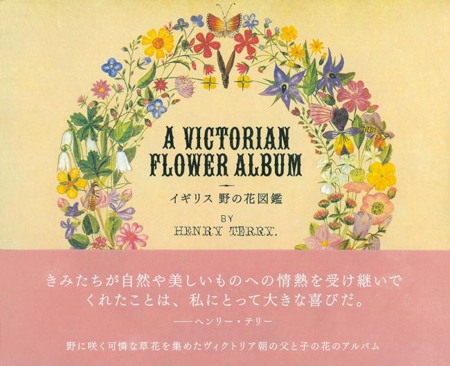 かわいいイラストの野の花図鑑待望の復刊イギリス 野の花図鑑