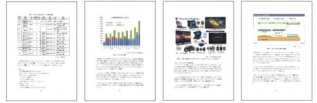 サンプルページ画像