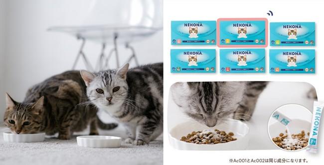 検査結果に基づく愛猫にぴったりのサプリメントを1種類お届け