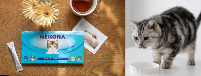 猫用パーソナルサプリメント「NEKONA」