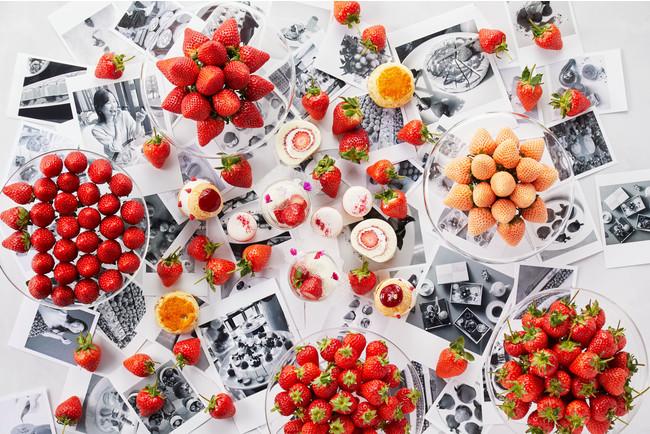 ストロベリーアフタヌーンティセット「Strawberry Voyage」イメージ