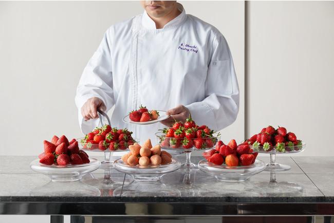 今年は苺の人気ブランド6品種を食べ比べも楽しめる
