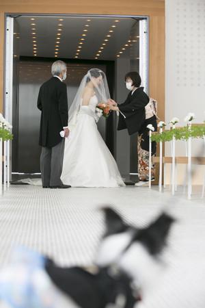 大切な家族である愛犬も出席できる婚礼オプションでさらにあたたかな挙式が叶います