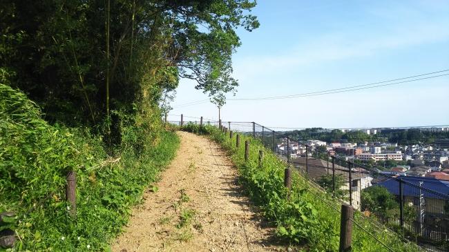 (コースの一例)「多摩よこやまの道と黒川の里山」※イメージ