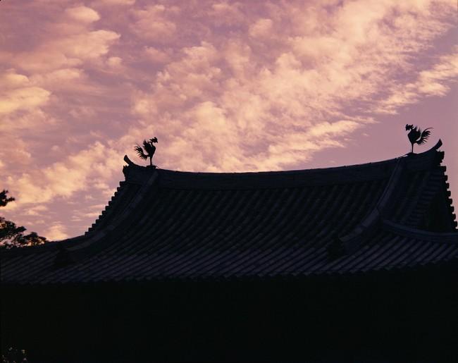 土門拳 平等院鳳凰堂夕焼け 1961年 (C)土門拳写真研究所