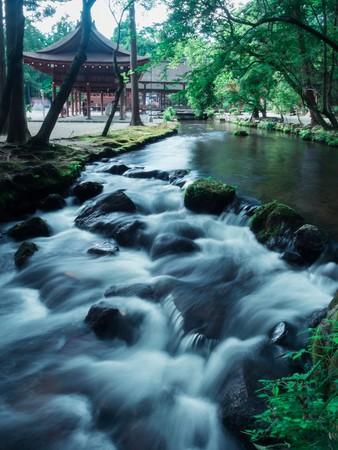 水野克比古 上賀茂神社 ならの小川 2014年 ©水野克比古