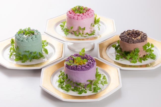 贈り物サラダ「ベジデコサラダ ハートフルシリーズ」