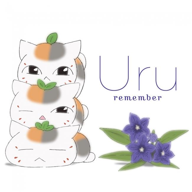 「remember」期間限定生産盤(アニメ盤)