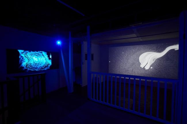 日本の墨汁が水の上を動く様子を収めた映像と写真で構成される幻想的なインスタレーション。韓国のアーティストイ・スンハの作品《The Untitled Space #2》