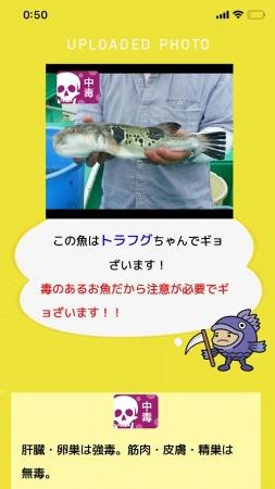 判定結果ページ上部 (毒がある魚)
