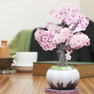 盆栽クラフト 桜
