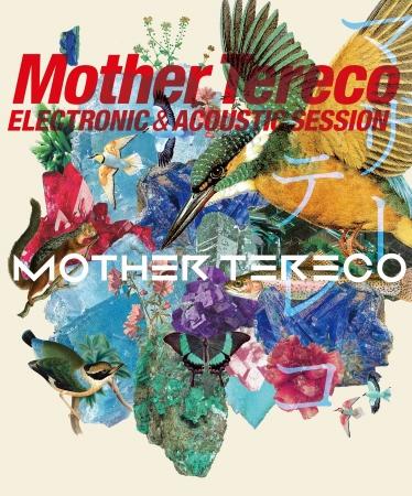 エレクトロ二クス&アコースティックの対話。『マザーテレコ』1