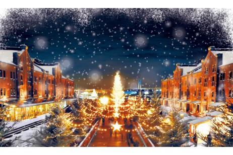 今からでも間に合う、横浜のクリスマスイベントをご紹介!3