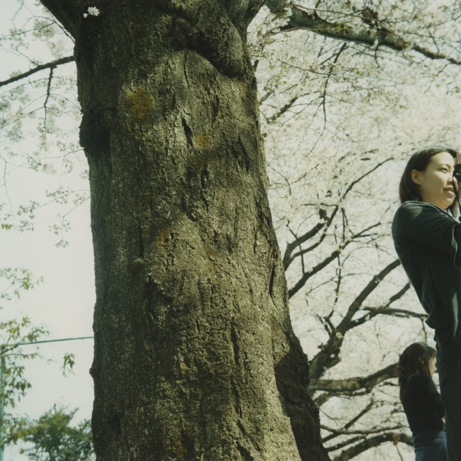 原美樹子《Untitled》2009年