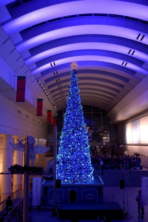 音楽とアートで楽しむ横浜のクリスマス特集1