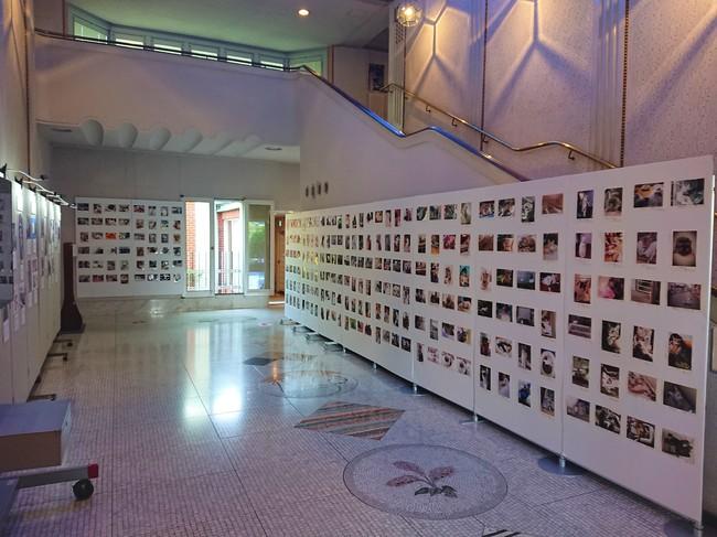 「大佛次郎×ねこ写真展2020」の様子(会期途中で臨時閉館となったため、9月6日まで応募作品360点のみロビーに展示中)