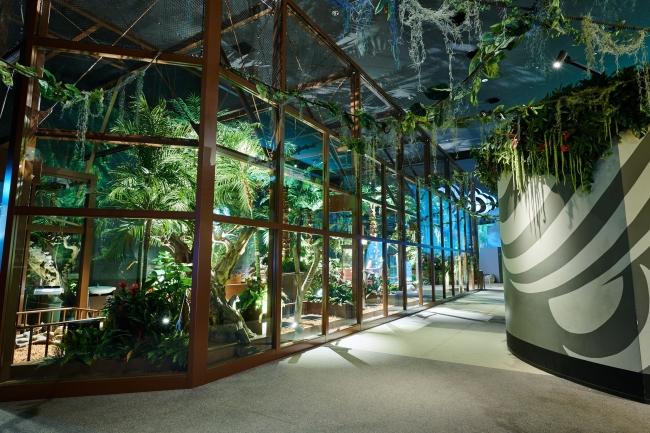動物とふれあえる屋内型パーク「Orbi Yokohama(オービィ横浜)」2018年4月1日(日)9:00~ リニューアルオープン! @ オービィ横浜 | 横浜市 | 神奈川県 | 日本