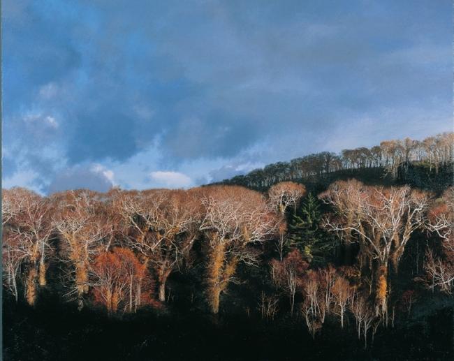 野田弘志「オロフレ峠」2010年